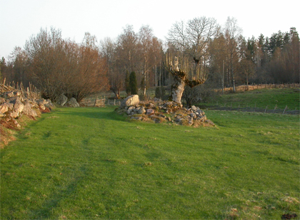 vy över hagmarken i Stubbhult